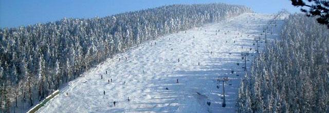 Ski-path